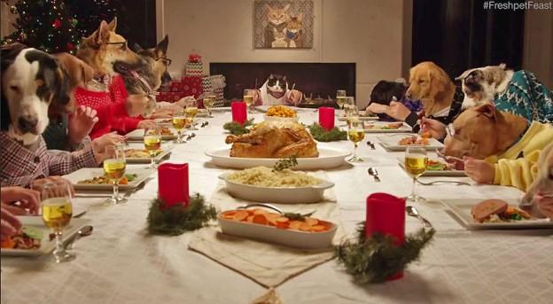 freshpet feast