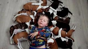 16 puppies